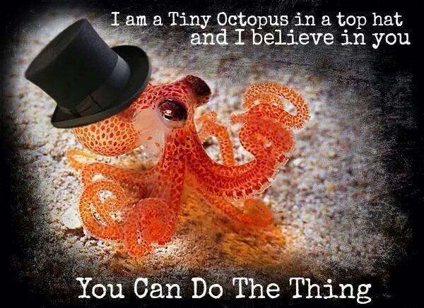 tinyoctopus